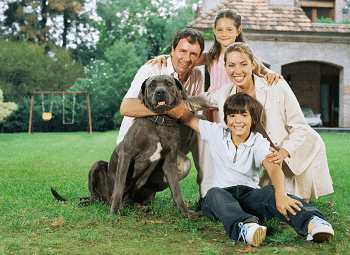 Family of four with their family dog in the front yard of their home
